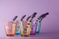 Många olika exponeringsglas som symboliserar beslutsamhet Arkivfoton