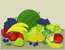 Många olika frukter Arkivbild