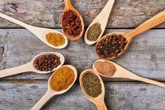 Många olika sorter av kryddor från Asien Fotografering för Bildbyråer