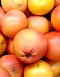 Många orange grapefrukter arkivfoto