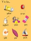 Många ord börjar med bokstav Y royaltyfri illustrationer