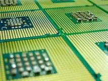 Många processorer med en mångfald av kontakter Arkivfoto