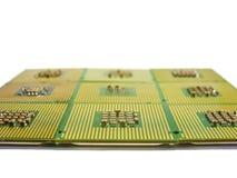 Många processorer med en mångfald av kontakter Royaltyfria Bilder
