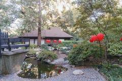 Många röd lykta i japanträdgård av den Descanso trädgården Arkivfoton
