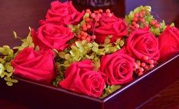 Många rosor av rummet Royaltyfri Bild