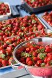 Många saftiga jordgubbar i behållare Fotografering för Bildbyråer