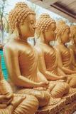 Många sittande guld- Buddhastatyer i Thailand Arkivbilder