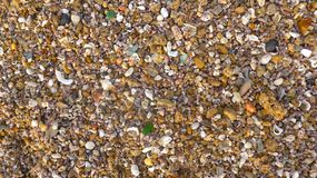 Många små skal, stenar, brutet exponeringsglas som textureras, närbild, format-fyllning bakgrund Pebble Beach i Andalusia, Cadiz Royaltyfri Foto