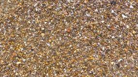 Många små skal, stenar, brutet exponeringsglas som textureras, närbild, format-fyllning bakgrund Pebble Beach i Andalusia, Cadiz Royaltyfri Fotografi