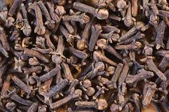 Många små torkade kryddnejlikor royaltyfria bilder