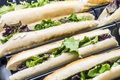 Många smörgåsar med deg för grön sallad och tonfisk Arkivfoto
