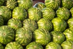 Många stora sötsakgräsplanvattenmelon, vattenmelonbakgrund Kopiera utrymme Vattenmelon på en pinne i händerna av mannen på en bac Royaltyfri Bild