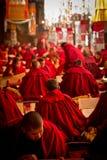 Många studerande munkar av den Drepung kloster Lhasa Tibet Arkivbild