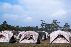 Många tält på en campingplats Royaltyfri Fotografi