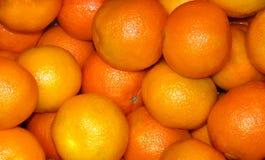 många tangerine Fotografering för Bildbyråer
