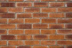 många tegelstentegelstenar gammal texturvägg Royaltyfri Fotografi