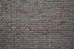 många tegelstentegelstenar gammal texturvägg Royaltyfria Foton