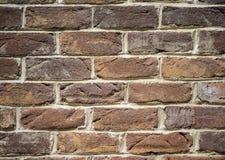 många tegelstentegelstenar gammal texturvägg Royaltyfri Foto