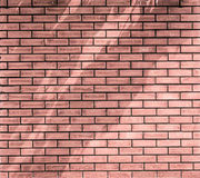 många tegelstentegelstenar gammal texturvägg arkitektoniskt som bakgrund var kan inramning använt Arkivbild