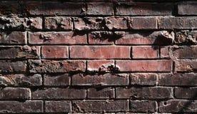 Många tegelstenväggbakgrund Arkivfoto