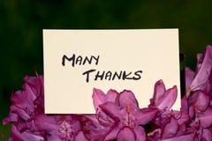 många thanks Royaltyfria Foton