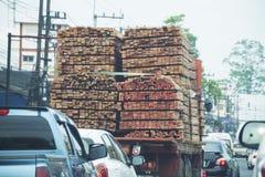 Många timmer på lastbilen trä loggar trans. Arkivbild