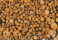 Många trädstammar i vedboden av skogsarbetaren som får beträffande Fotografering för Bildbyråer
