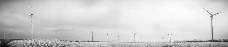 Många väderkvarnar som roterar under molnig dag för blåsig vår på olja, våldtar fältet Arkivfoto