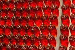 Många vinflaskor i vinkällare av vinodlingen royaltyfria foton