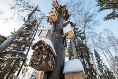 Många voljärer, för fåglar och förlagematare på trädet Hus för fåglar i vintern under snön på trädet _ royaltyfri foto