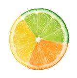 mångfärgad abstrakt frukt Royaltyfria Bilder