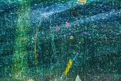 Mångfärgad abstrakt textur som skapas av vatten och ljus på exponeringsglaset Royaltyfri Bild