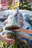 Mångfärgad salamanderspringbrunn Royaltyfria Foton