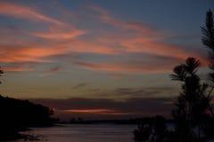 Mångfärgad solnedgång på sjön till och med trädkontur Royaltyfria Bilder