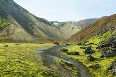 Mångfärgade berg på Landmannalaugar Royaltyfri Fotografi