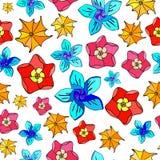 Mångfärgade blommor på vit bakgrund Royaltyfria Bilder