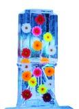 Mångfärgade blommor som frysas in i den genomskinliga isasken Royaltyfria Foton