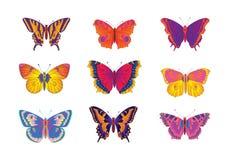 Mångfärgade fjärilar Royaltyfria Bilder