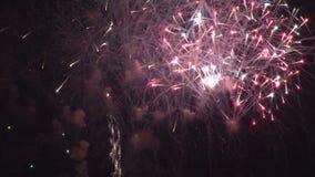 Mångfärgade fyrverkerier som exploderar stock video