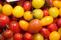 Mångfärgade körsbärsröda tomater för cocktailparty Arkivbild