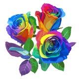Mångfärgade rosor på vit bakgrund Positiv vårillustration med blommor Royaltyfri Foto