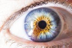 Mångfärgat mänskligt öga för makro Arkivfoton