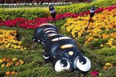 Mångfotingdiagram färger för Boquete Panama blom- trädgårdFantasyland barndom royaltyfria bilder