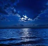 Månsken över vatten Arkivfoton