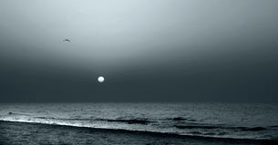 månskensun royaltyfri fotografi