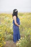 Mère à être Image stock