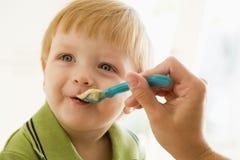 Mère alimentant la jeune chéri de garçon   Photographie stock libre de droits