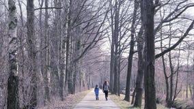 Mère avec le fils sur la promenade La femme avec l'enfant marche par la campagne Principale allée de beau chemin clips vidéos