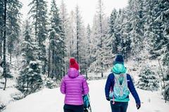 Mère avec le promeneur de bébé appréciant la maternité dans la forêt d'hiver photo stock