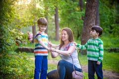 Mère de jeune femme appliquant l'insectifuge à son fils deux avant jour ou égaliser d'été de hausse de forêt bel protection photo stock